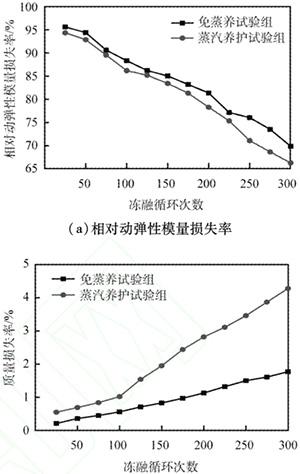 不同混凝土试验组的抗冻融性能